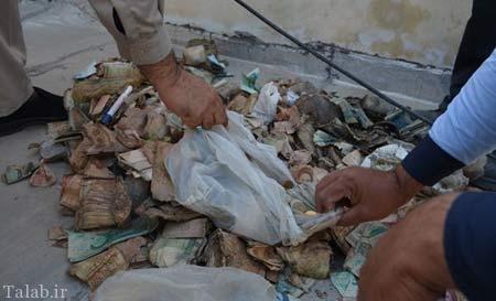 دستگیری گدای میلیونر در بوشهر (عکس)