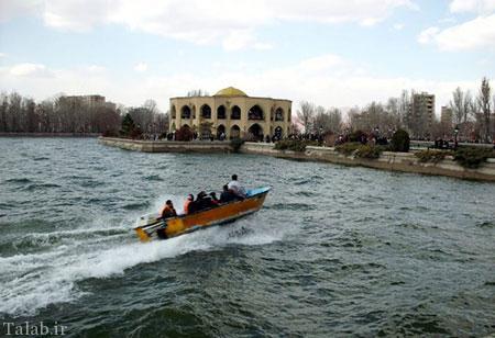 معرفی شاه گلی در تبریز (عکس)