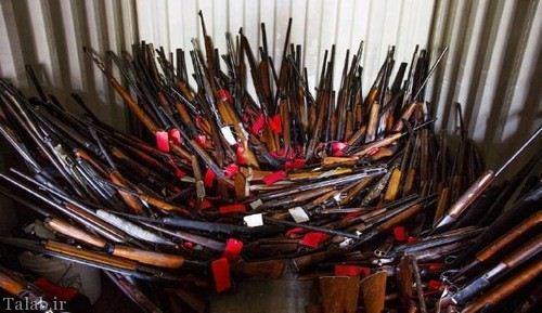 مردی که با 5000 تفنگ زندگی می کند (عکس)