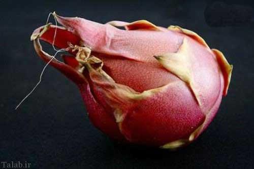 تصاویری از ترسناک ترین میوه های جهان