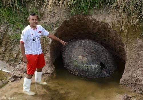 پیدا شدن تخم دایناسور در آرژانتین + تصاویر