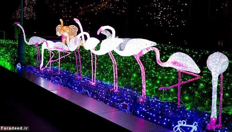 جشنوارههای زیبای نور در ژاپن + عکس