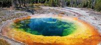 حوضچه گل نیلوفر بهترین مکان دیدنی ایالات متحده آمریکا