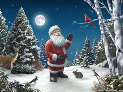 بزرگ ترین بابانوئل شنی دنیا (عکس)