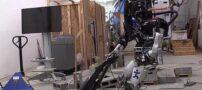 ربات هایی برای کمک کردن به خانم های خانه دار + عکس