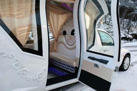 عکس های دیدنی از یک ماشین عروس خاص و متفاوت