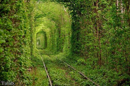 تونل های منحصر به فرد دنیا + عکس