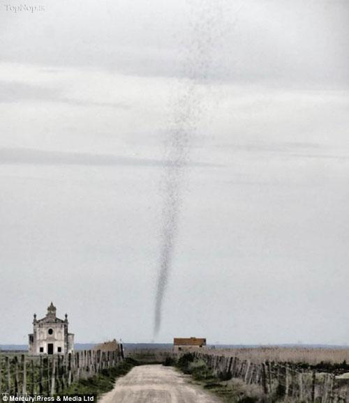 تصاویری از خانمان سوز ترین گردباد جهان