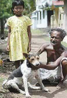 ازدواج اجباری یک دختر با سگ در هند