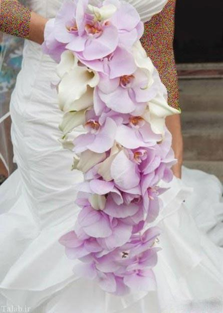 : انواع تاج عروس , تاج ژله ای , تاج ژله ای عروس , تاج سر , تاج عروس , تاج عروس 1395 , تاج عروس 2015 , تاج عروس 2016 , تاج عروس 95 , تاج عروس ژله ای , تاج گل عروس , عکس تاج , عکس تاج عروس , مدل تاج , مدل تاج ژله ای , مدل تاج عروس , مدل تاج عروس جدید