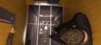 مرگ دلخراش در آسانسور بیمارستان امام خمینی (ره)