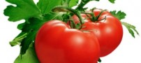 خواص گوجه فرنگی و کلم و میوه و ماهی ها