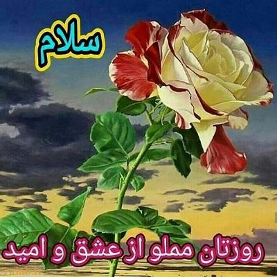 عکس متحرک صبح بخیر فارسی