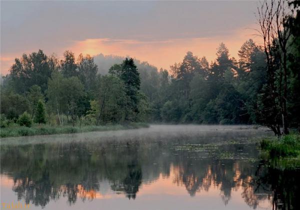عکس های طبیعت و دنیای زیبای ما