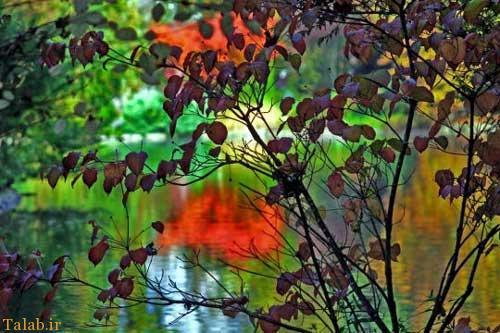 تصاویر مناظر طبیعت در 4 فصل زیبای جهان
