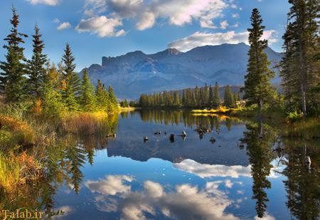 عکسهای زیبا از طبیعت