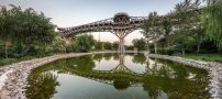 معمار جوان پل طبیعت تهران را بشناسید + عکس