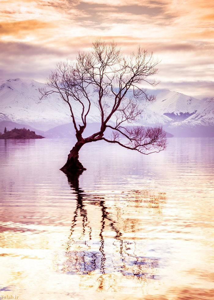 عکسهای زیبا از طبیعت بکر سراسر جهان