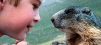 عکس های جالب از ارتباط زیبای انسان و حیوان