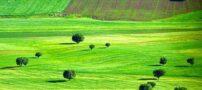 عکس های دیدنی از زیبایی های ایران