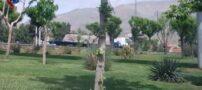 کامیون های حامل اس-300 در راه تهران + عکس