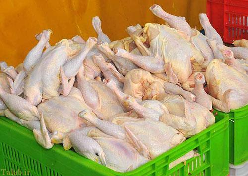 نکاتی که در خرید مرغ سالم باید توجه داشت