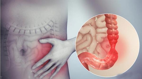 دانستنی های جالب درباره سیستم ایمنی بدن