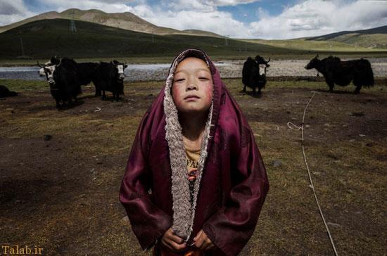 عکس های برندگان مسابقه عکاسی سونی ۲۰۱۶