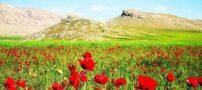 عکس های بی نظیر از ایذه، بهشت گمشده در خوزستان