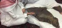 پای عجیب مردی که شبیه به پای فیل شد (+عکس)