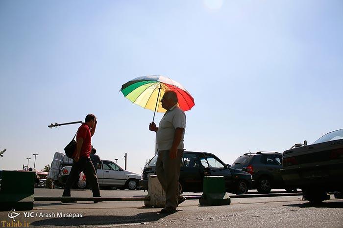 گرمای طاقت فرسای تابستان در راه است ( + تصاویر)