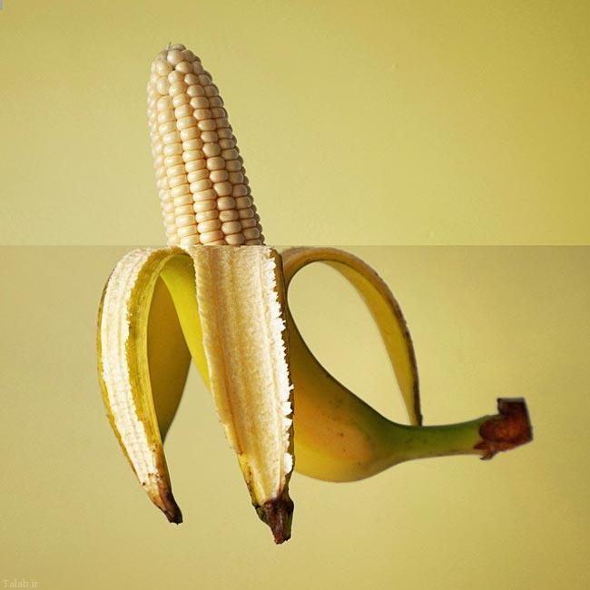 عکس های جالب از خلاقیت هنرمندانه در ترکیب عکس ها