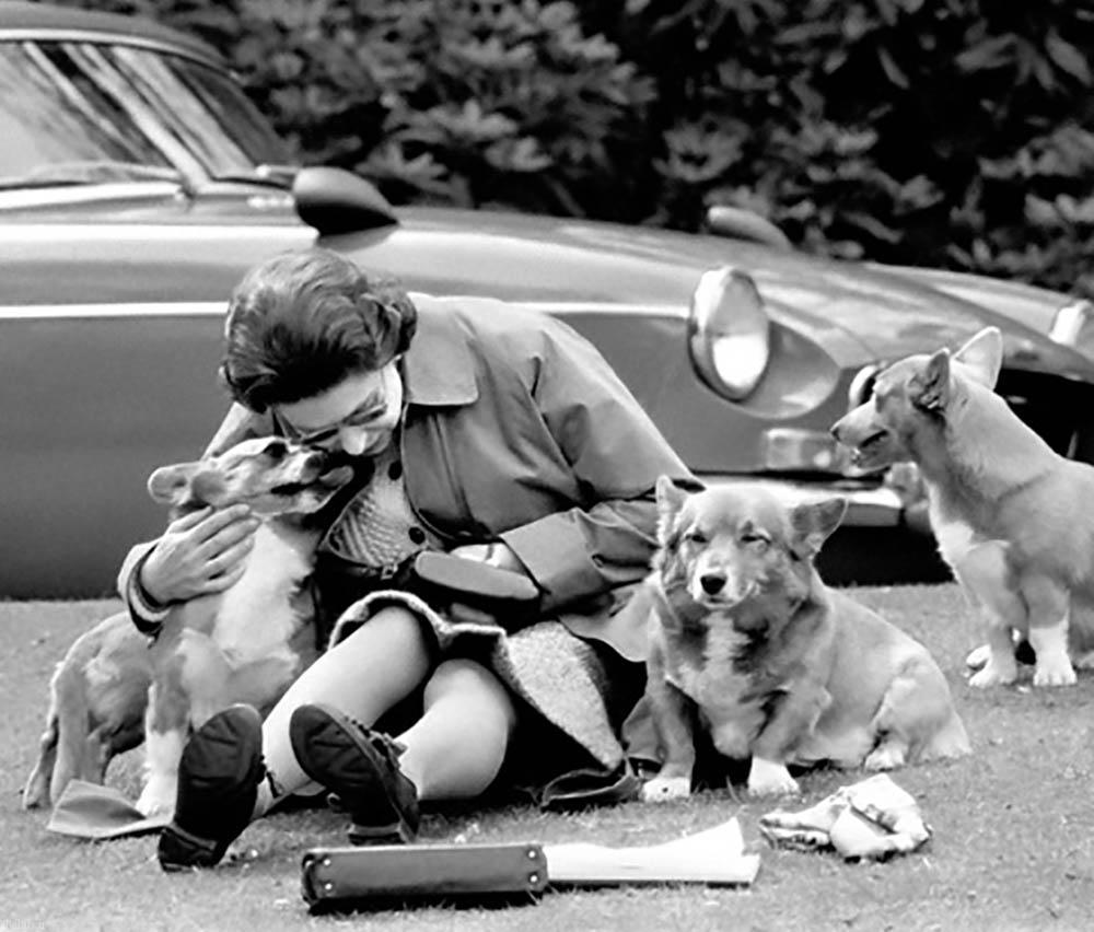 خودروهای بی نظیر ملکه بریتانیا الیزابت دوم + تصاویر