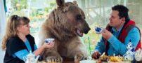 زندگی جالب زوج روسی با یک خرس غولپیکر (+عکس)