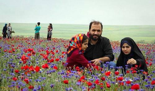 عکس هایی زیبا از طبیعت اردبیل در خرداد