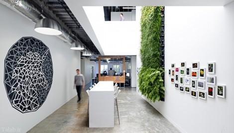این مکان زیبا شرکت فیسبوک است ( تصویری)