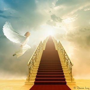 احادیثی درباره ی بهشت