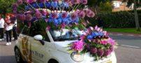عکس های جالب از فستیوال ماشین عروس در هلند