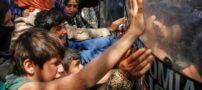 افشای آزار جنسی پناهجویان در جزیره نائورو استرالیایی