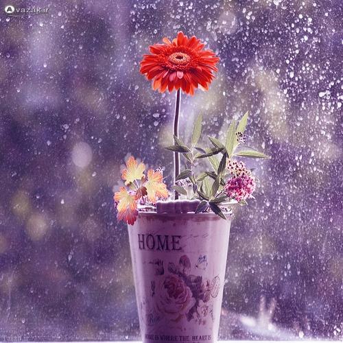 اس ام اس با موضوع باران