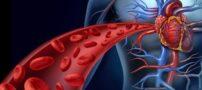 تاثیر ورزش بر دستگاه گردش خون