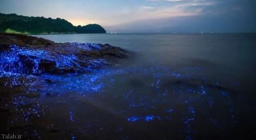 عکس های طبیعت زیبای سنگ های گریان در ساحل