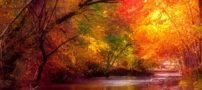 پیامک زیبا در مورد پاییز