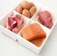 رژیم غذایی پر پروتئین چیست؟