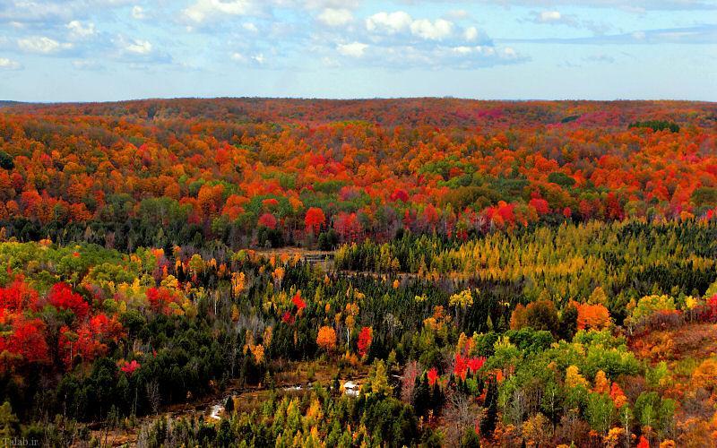 تصاویر زیباترین پاییز دنیا در شهر میشیگان آمریکا