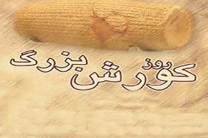 روز بزرگداشت کوروش کبیر هفتم آبان است