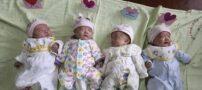 زوج چینی چهار قلوهای سالم به دنیا آوردند