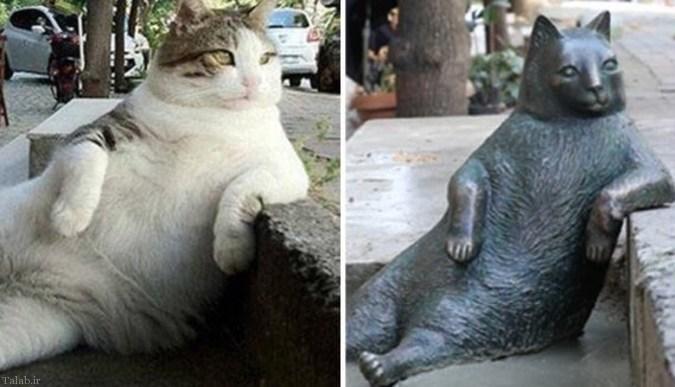 ساخت مجسمه تمبیلی گربه معروف استانبول (+عکس)