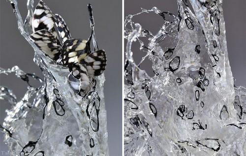 مجسمه هایی الهام گرفته از آب پاشیده شده (+عکس)