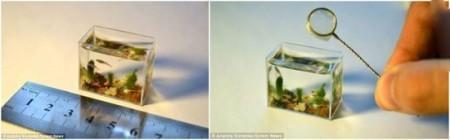 آکواریوم های جالب و جذاب جهان (+عکس)
